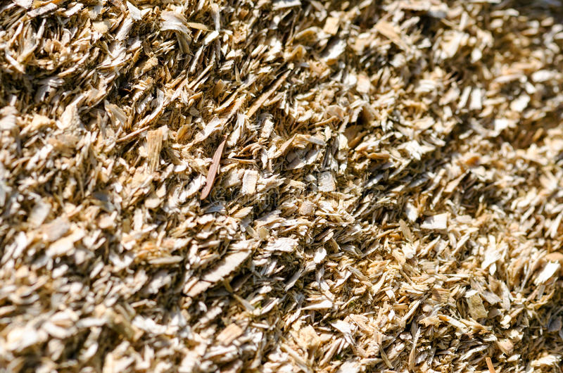 Woodchips. Detail of a pile of shredded wood royalty free stock images