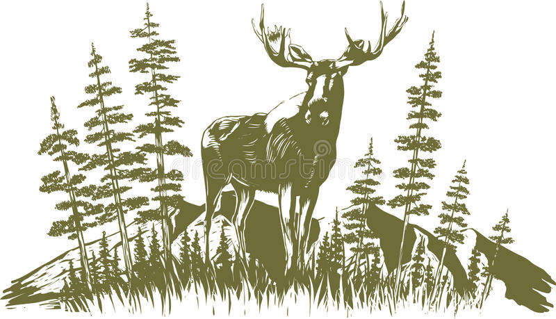 Woodcut łosia amerykańskiego projekt royalty ilustracja