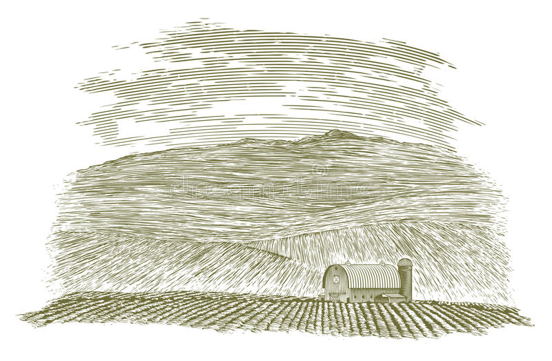 Woodcut pole i ilustracja wektor
