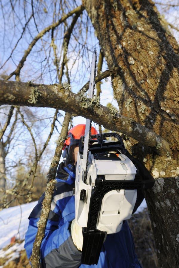woodcutter действия стоковая фотография