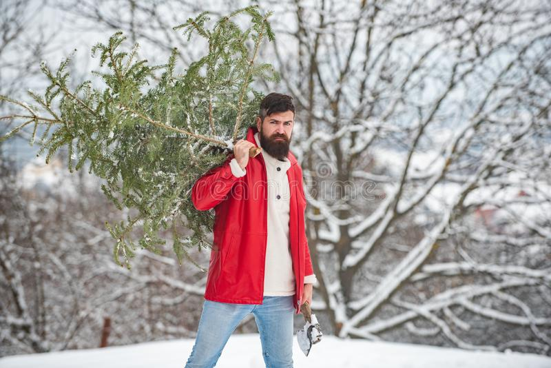 Woodcutter with axe in the winter forest. Winter landscape. Styling Santa hipster with a long beard posing on the royalty free stock image