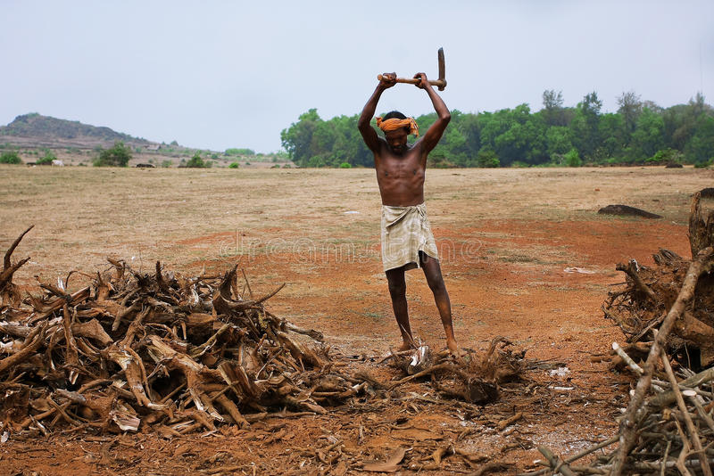 The woodcutter in a valey near indian city Gokarna royalty free stock photos