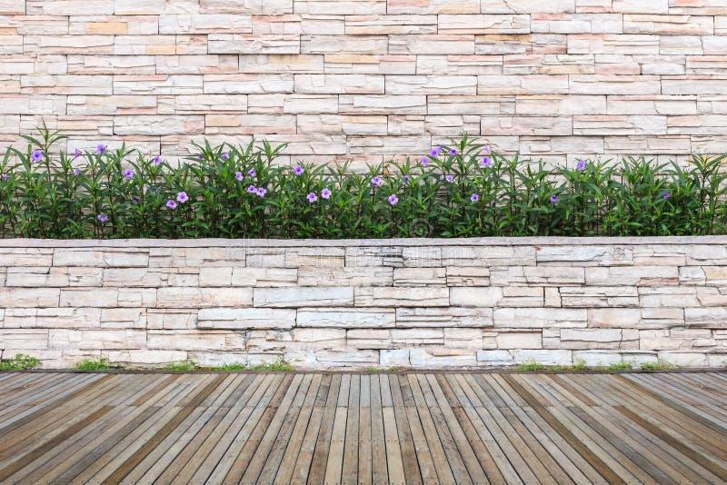 Download Woodecking Eller Durk Och Växt I Trädgårds- Dekorativt Fotografering för Bildbyråer - Bild av modell, dekorativt: 76701049