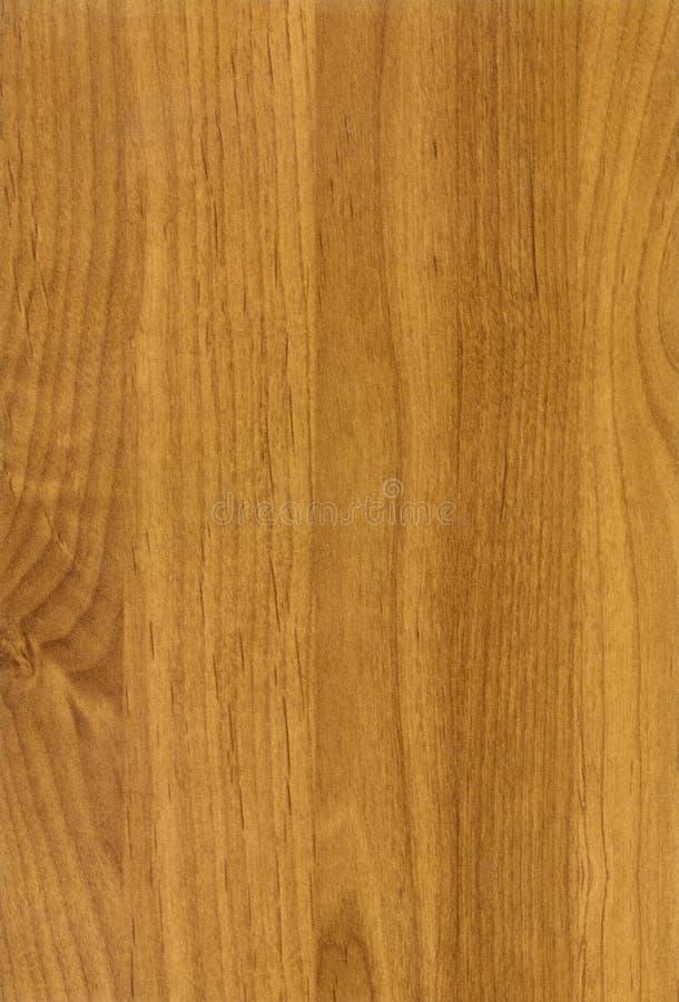 Wooden Alder Sinuata texture. Close-up wooden HQ Alder Sinuata texture to background royalty free stock images