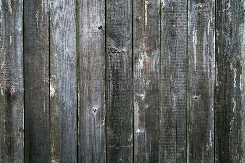 Wooden antique plank background texture. Grey stock images