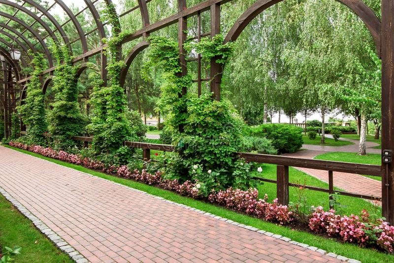 Wooden arcade with climbing plants on arches and a flower bed. Wooden arcade with climbing plants on arches and a flower bed with flowers and a pedestrian royalty free stock images