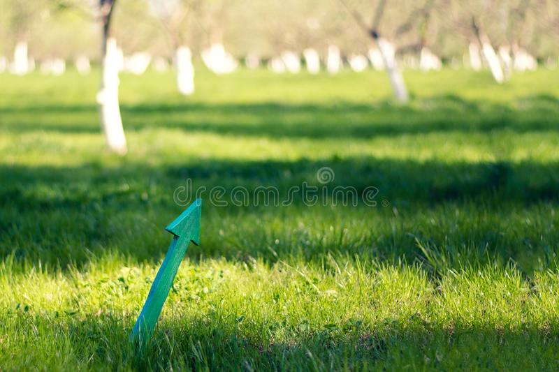 Wooden arrow up on the background of the spring garden. The concept of motivation, upward movement, development. Copy space.  royalty free stock photos