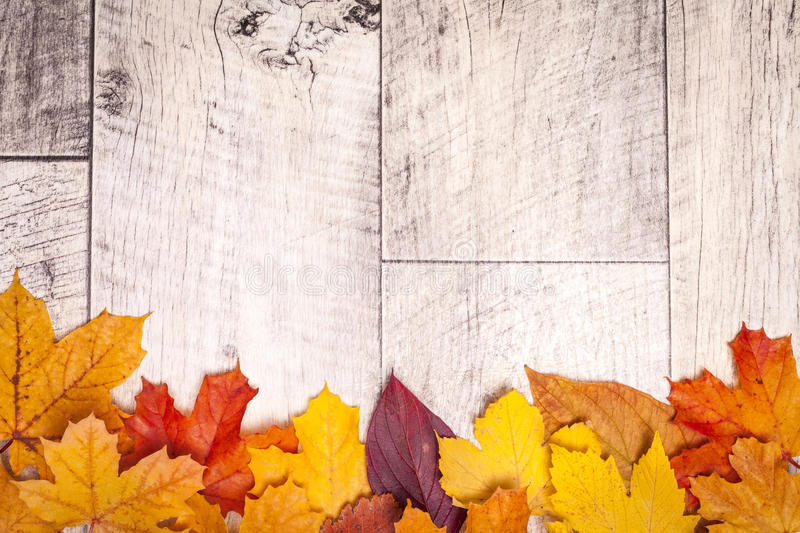 Wooden autumn background with leaves royalty free stock photography