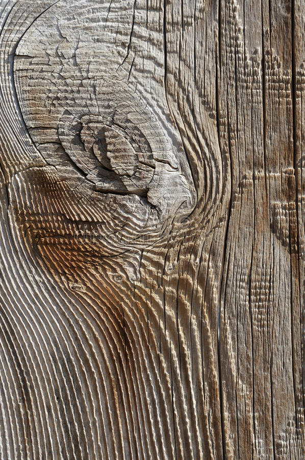 Download Wooden background stock photo. Image of grain, backgrounds - 27020232
