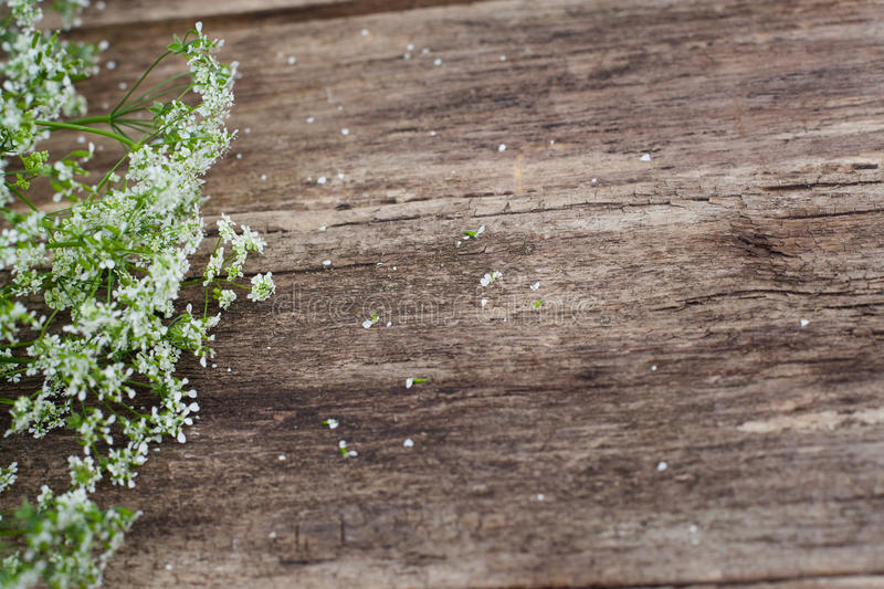 Wooden background with field summer flowers,void. Copyspace for commercials, rustic style stock photos