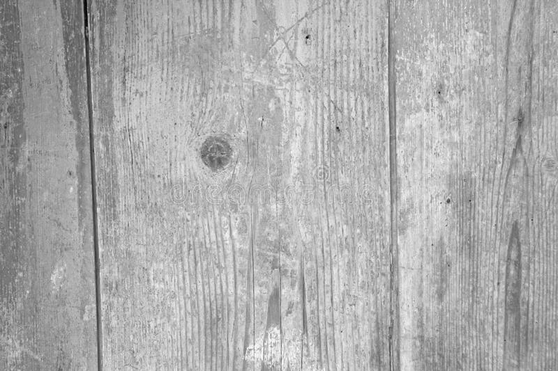 Wooden Background. Gray Background from the Natural Tree. Wood texture. Empty Background for Design, Design and Templates stock image
