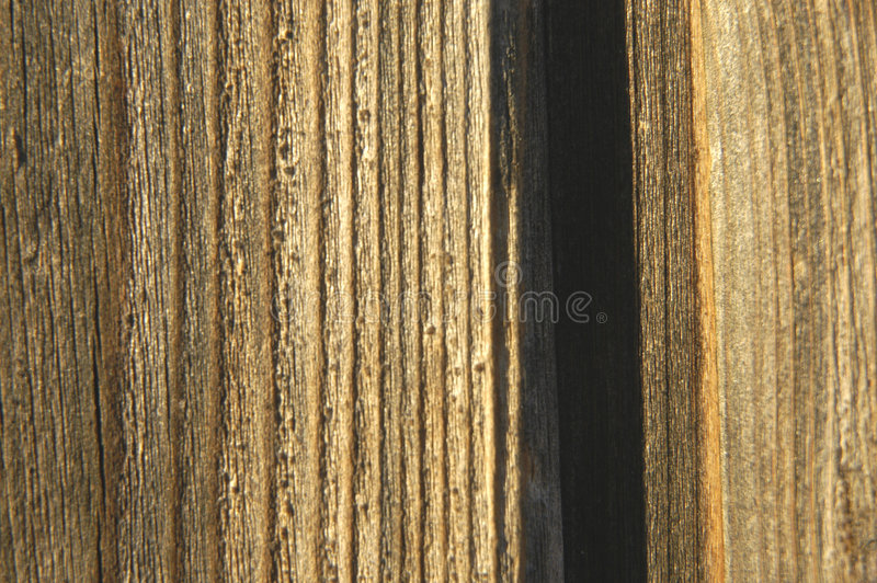 Wooden background II royalty free stock photo