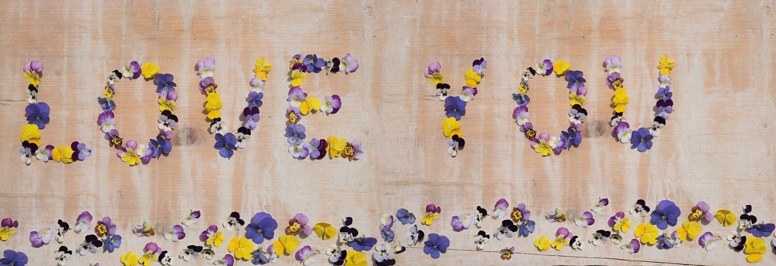 Wooden board with love you text and border of viola blossoms stock photography