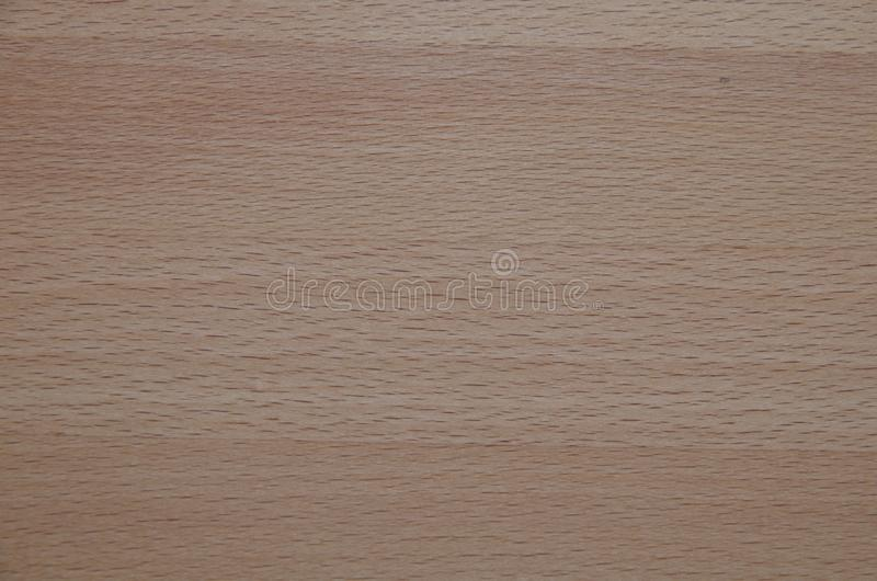 Wooden background, natural beech texture, texture-wood lining. Surface natural beech texture for design and decoration. royalty free stock images