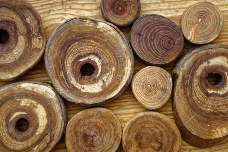 Wooden background with a round slices of cherry, apple tree, plum-tree and ash lumber stock photography