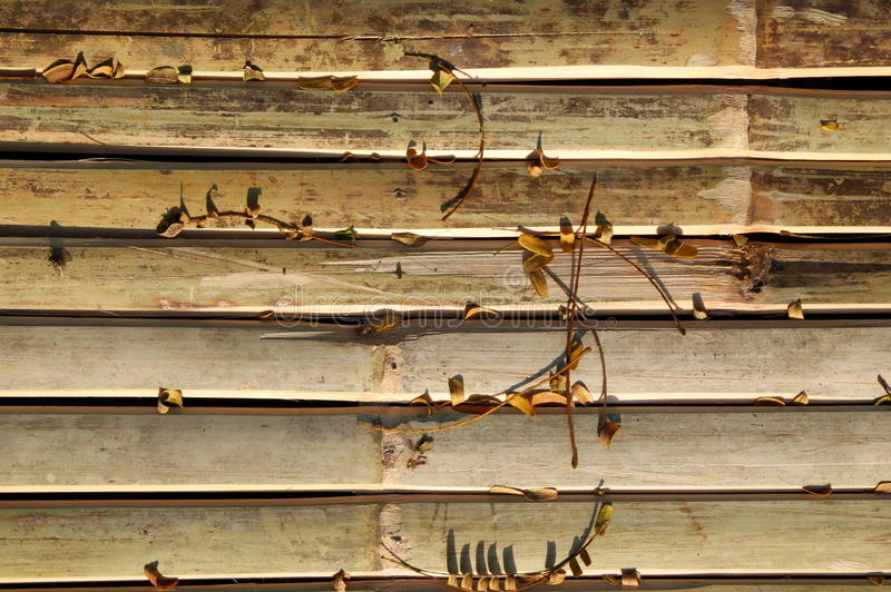 The wooden background with yellow leaves. Travel to Bangkok, Thailand. The wooden background with yellow leaves royalty free stock images