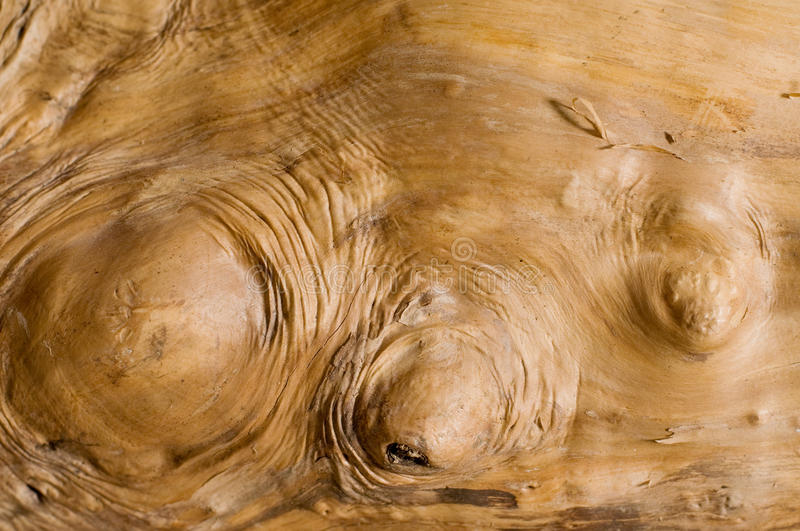 Wooden backgrounds royalty free stock photo