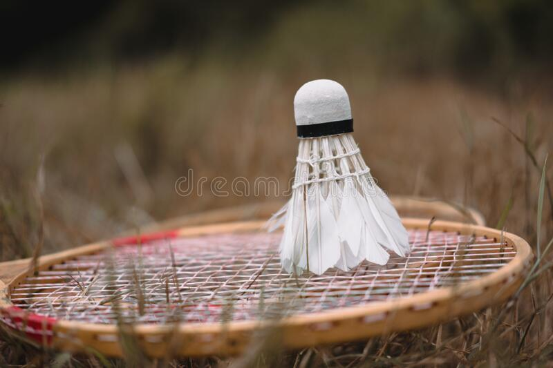Wooden badminton rackets and a white feather shuttlecock. The game of badminton. Hobbies and outdoor recreation stock photos