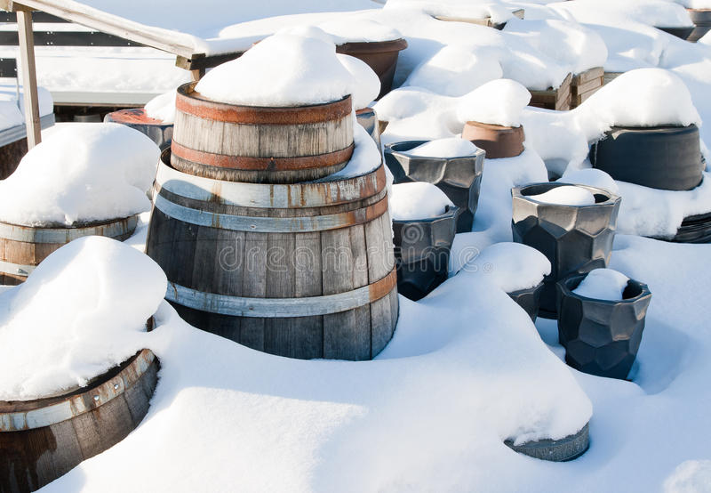 Wooden barrels royalty free stock photo