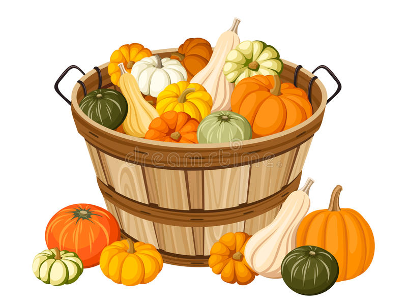 Wooden basket with pumpkins. royalty free illustration