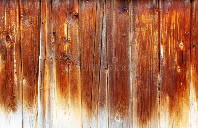 Wooden batten wall with detailed structural pattern. royalty free stock photography