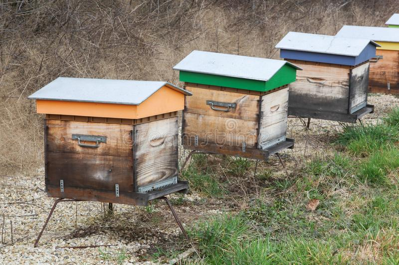 Wooden bee hives in a garden. France royalty free stock image