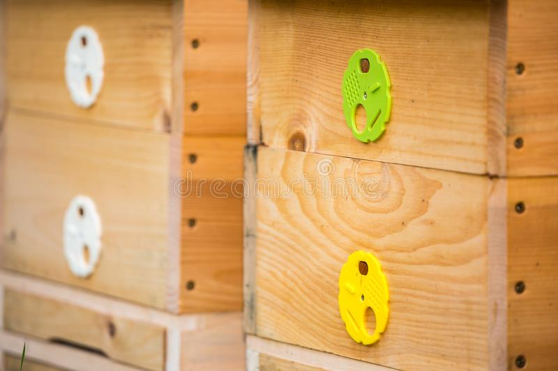 Wooden bee hives. stock images