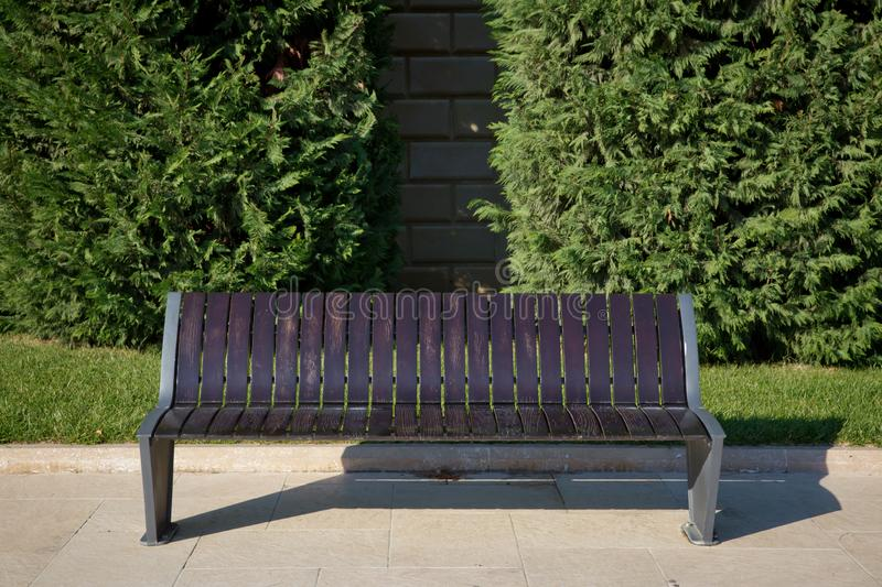 Wooden bench in the city park . Bench in the park among the trees . A wooden bench in the park, against a background of royalty free stock image