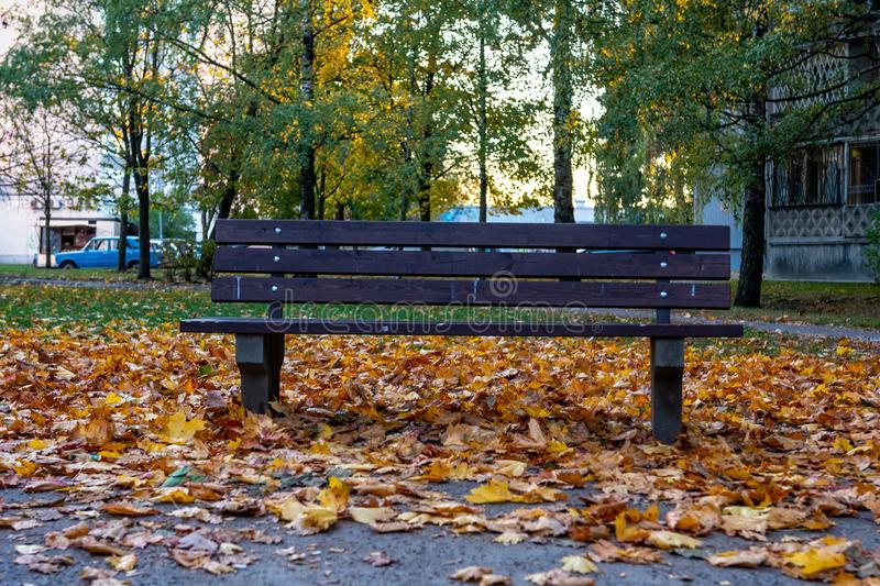 Wooden bench and colorful autumn leaves in a multi-story house courtyard royalty free stock photography
