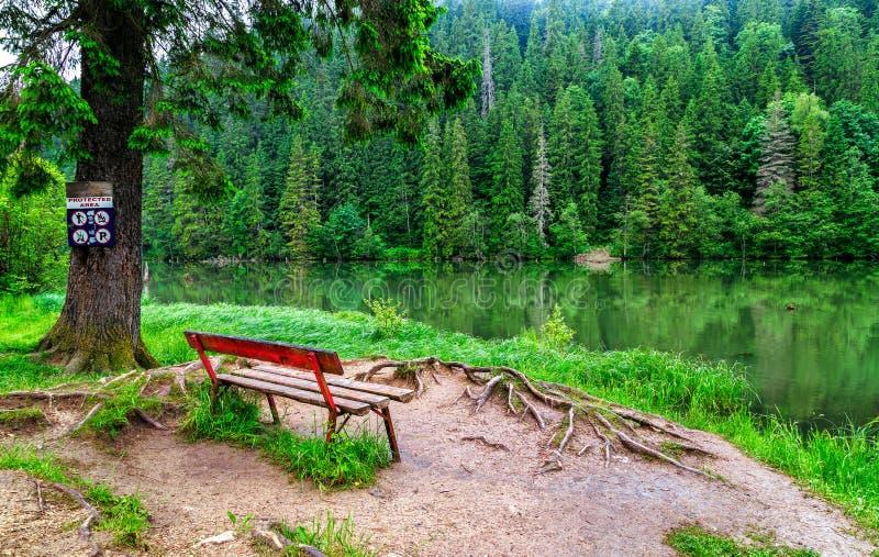 Wooden bench at the edge of a mountain lake stock photos