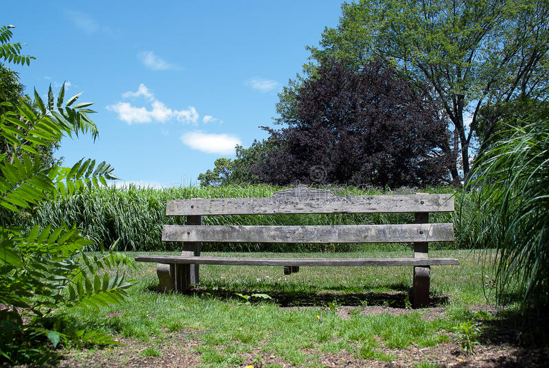 Wooden Bench on a Green Lawn. Rustic Wooden Bench on a Green Lawn in Summer Garden royalty free stock photo