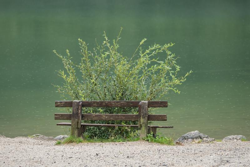 Wooden bench near the Gleinkersee in Austria royalty free stock photo