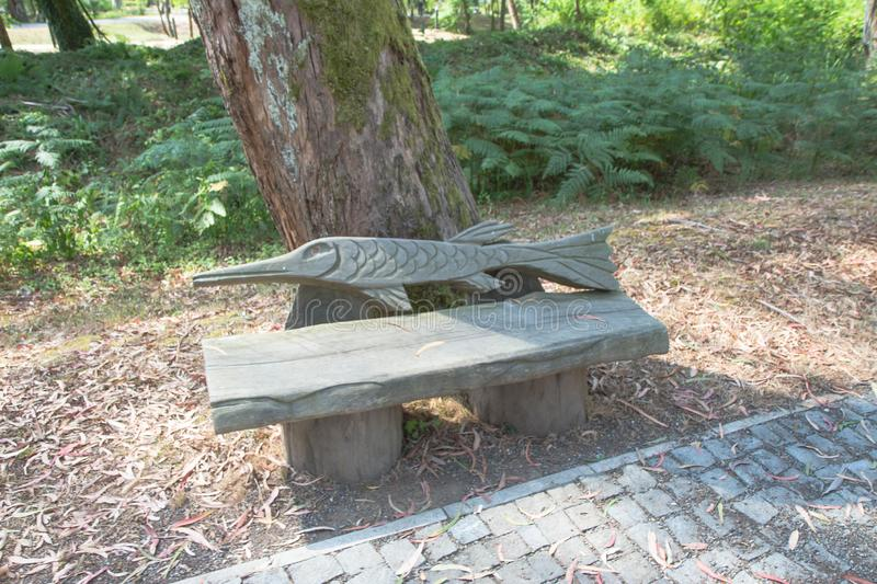 Wooden bench in the park. Park bench shaded under the trees in the Public Gardens. The view of park. Wooden bench in the park. Park bench shaded under the trees stock photo