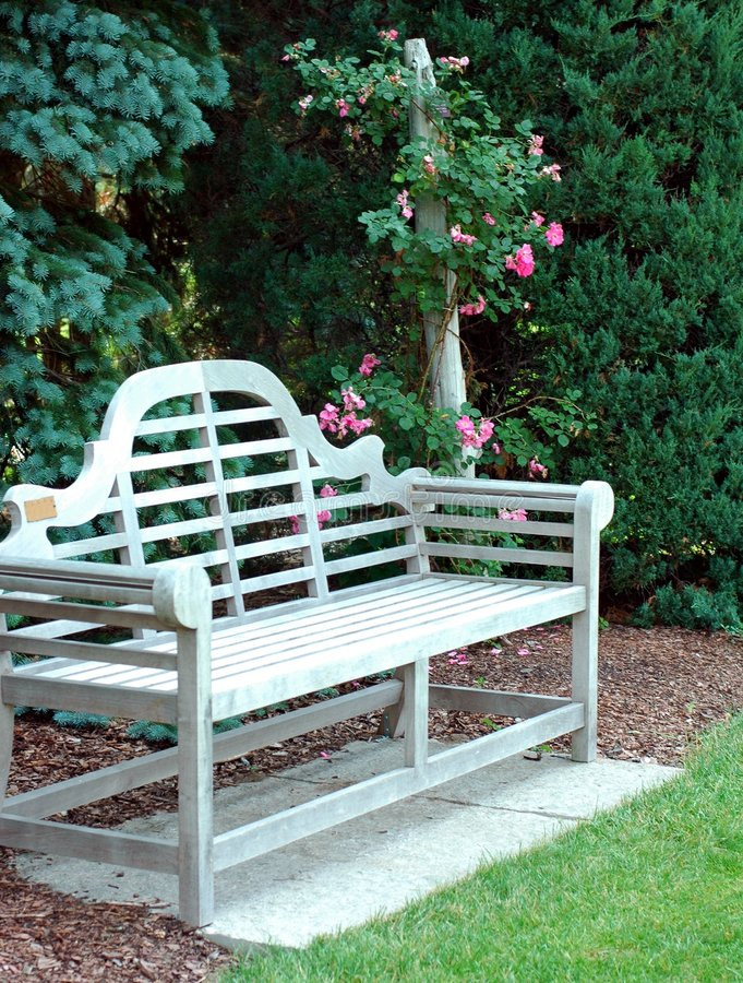 Wooden Bench And Pink Roses stock photo