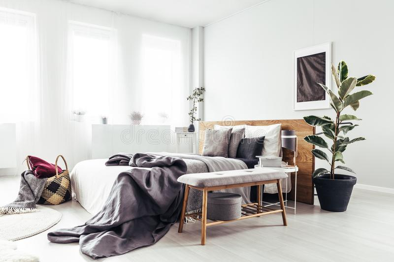 Plant in bright bedroom. Wooden bench and plant next to bed with grey bedsheets in bright bedroom interior with black poster on the wall royalty free stock photos
