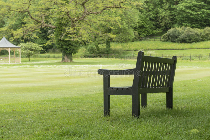 Wooden bench under a big tree standing on a grass field in a park large garden royalty free stock image