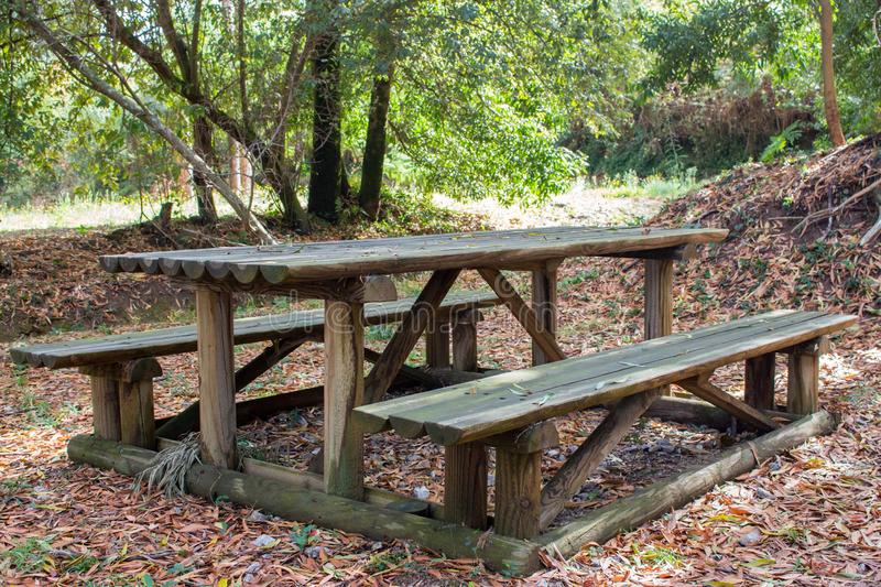 Wooden benches with table in the forest. Place for the rest and relax in park. Old outdoor furniture. Place for picnic. Tourism in autumn. September concept royalty free stock photography