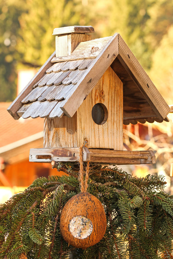 Wooden bird feeder with a coconut shell suet treats hanging. Wooden bird feeder decorated with pine tree branches with a coconut shell suet treats hanging royalty free stock photos