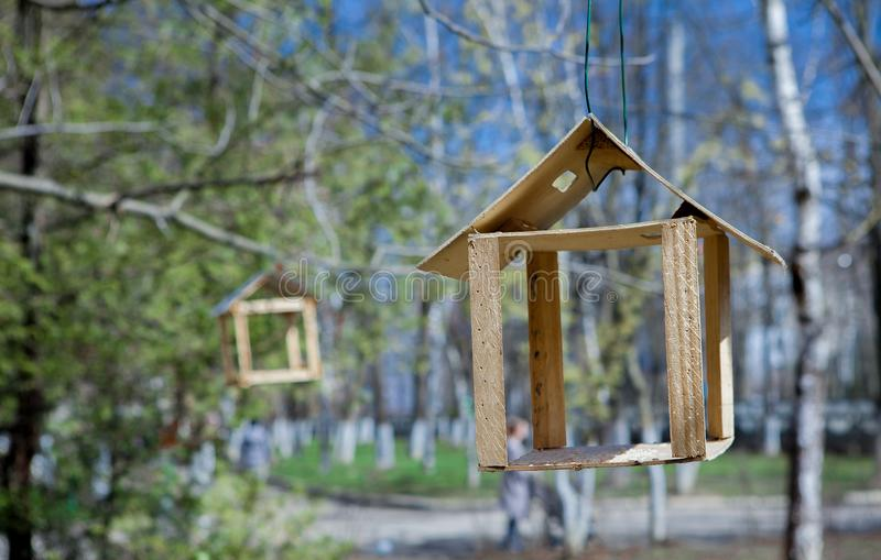 Wooden bird feeder hanging on a branch of green tree. Nature care concept.  royalty free stock photography