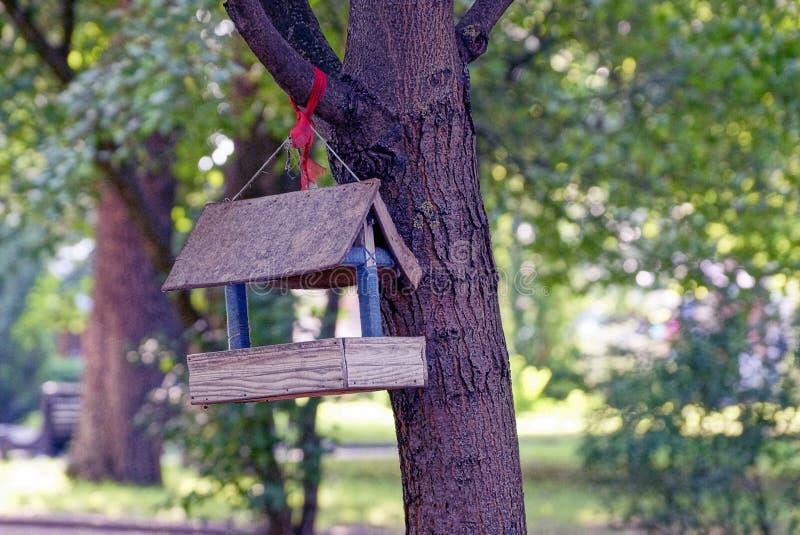 Wooden bird feeder hanging on tree in park. Gray plywood feeder hanging on a tree branch on the nature stock photos