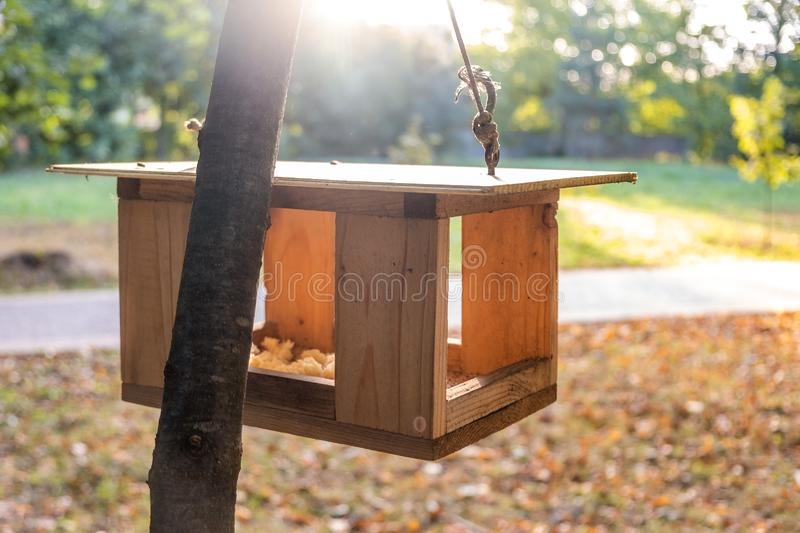 Wooden bird feeder house on a tree in autumn park. Animal wildlife care concept.  royalty free stock photography
