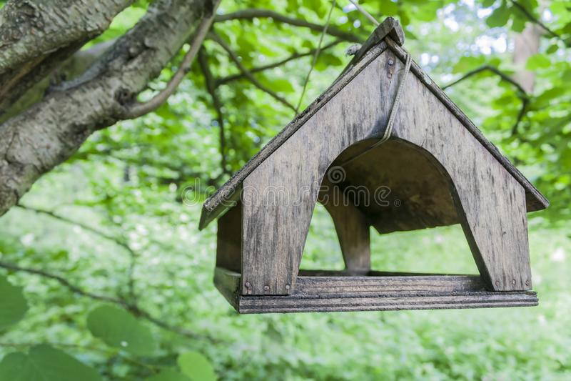 Wooden bird house-feeder hanging on a branch. In a green forest royalty free stock photography