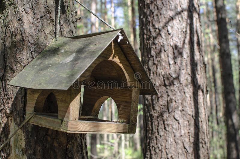 Wooden bird house hangs on a tree in a green forest stock images