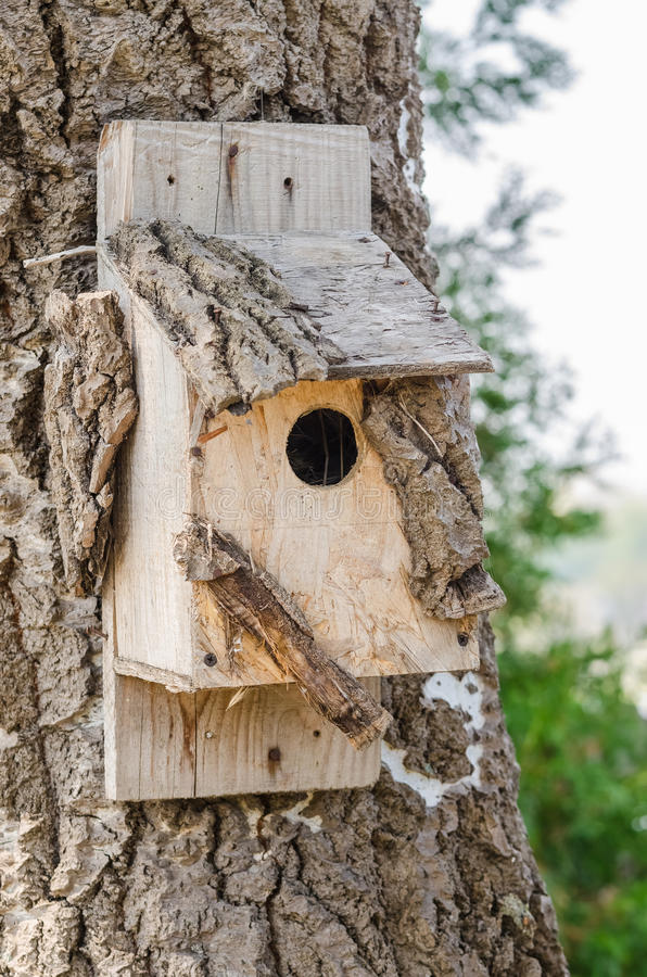 Free Wooden Bird House On A Tree Royalty Free Stock Photography - 33047697