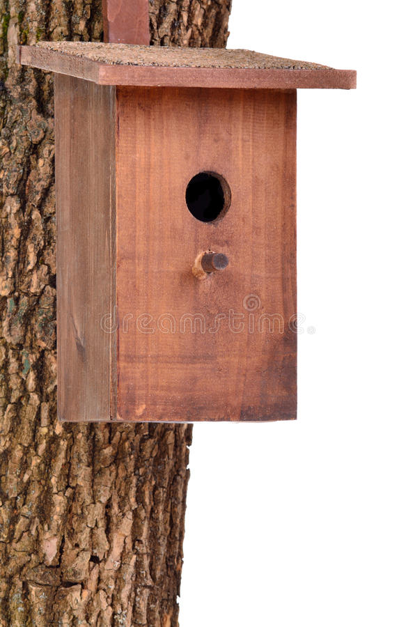 Free Wooden Bird House(starling House)on Tree Trunk Stock Images - 19382564