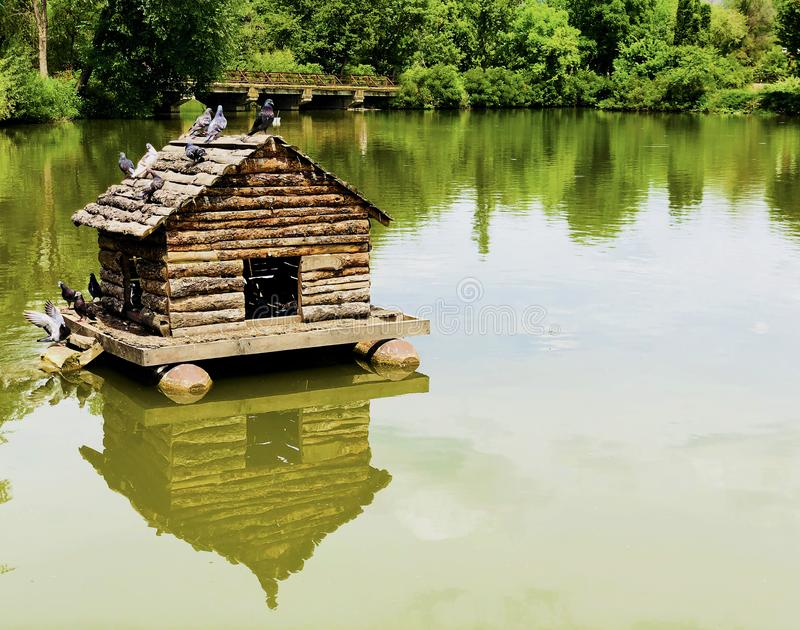 Wooden bird pigeon house reflection in the water in the middle of a calm lake. In a bright sunny spring day stock photo
