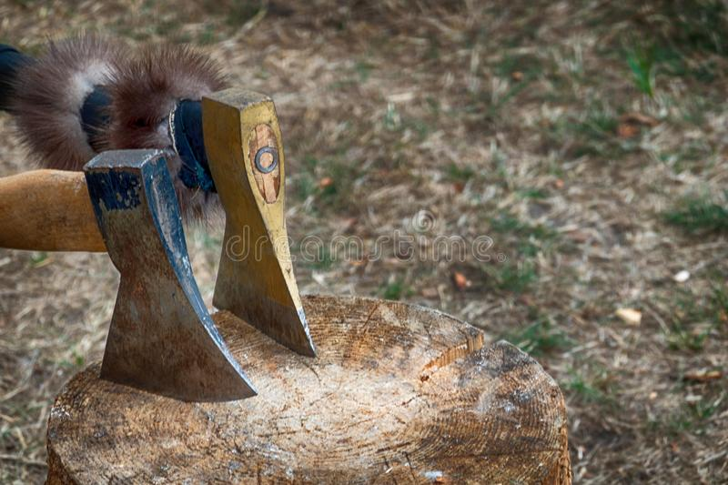 Wooden block for chopping wood with two hand axes.  stock images