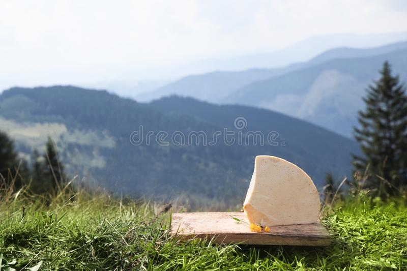 Wooden board with delicious cheese on grass in mountains. royalty free stock images