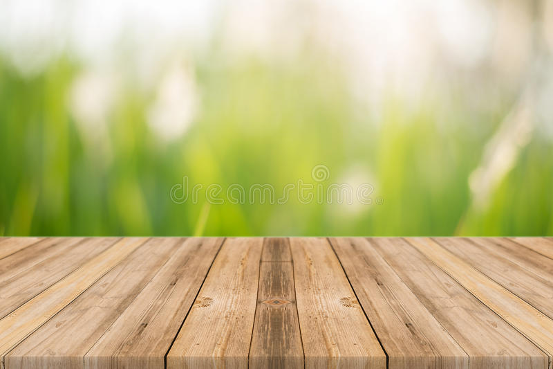 Wooden board empty table blur trees in forest background. stock photos
