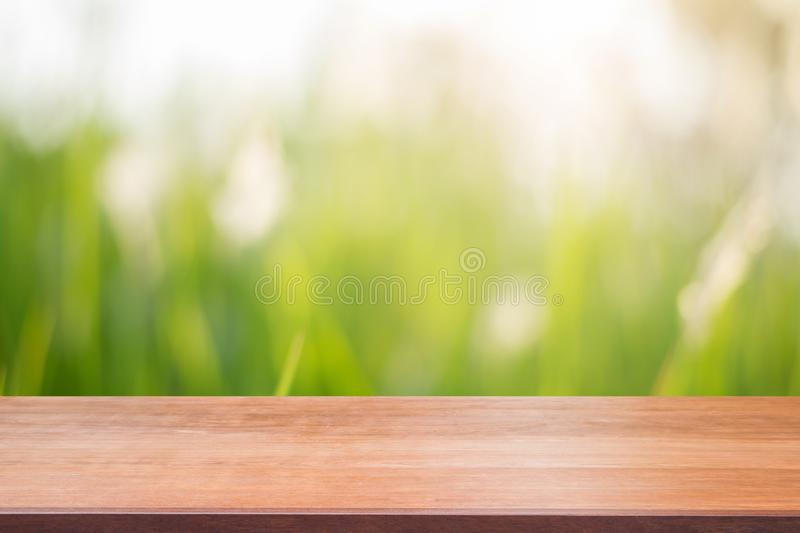 Wooden board empty table in front of blurred background. Perspective brown wood over blur trees in forest. Wooden board empty table in front of blurred stock photography